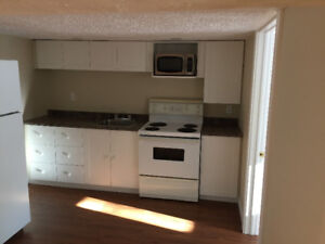 One Bedroom Basement Apartment - Newly Renovated!