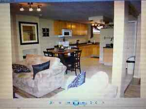 Blackfalds 2 bed,1bath lower ALL INCLUSIVE for rent.