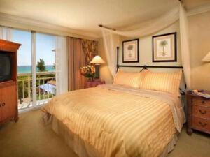 DREAM VACATION SPOT: PALM BEACH SHORES RESORT 1 BEDROOM UNIT