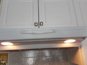 Kitchen Range fan