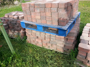Used paver in good shape