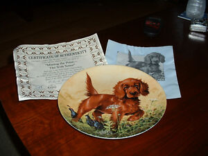 Field Puppies Plates (3 available at $10.00 each)