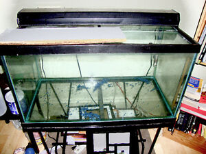 60 gal Aquarium with stand+heater & 2 Filters