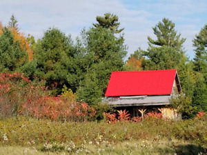 8 acres with log  cabin