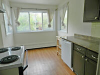 4 1/2 Apartment near metro Cote des Neiges.