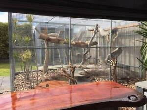 Large Aviary Woodcroft Morphett Vale Area Preview