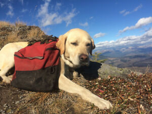 Backpacking labs
