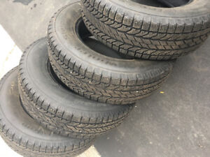 BF Goodwrench winter slalom tires.