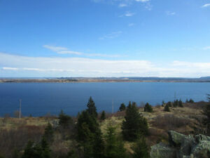 Anthonys Rd - Spaniards Bay - MLS 1101128/1101127 St. John's Newfoundland image 2