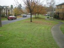 Lawn & Garden Care Kew Boroondara Area Preview