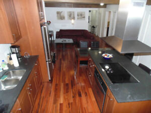 Fully furnised all included apartment in Plateau (3 bedrooms)
