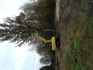 Brush Cutting, Removal & Brush Mowers for hire. Prince George British Columbia image 3