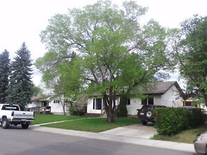 1 BR Bsmt Suite in Meadowlark-Available May 1st