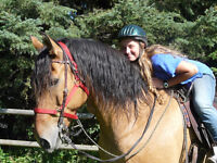 Summer Horseback Riding Camps