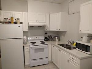 New 2 Bedroom Basement Suite for Rent