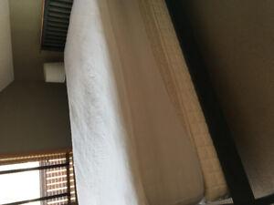 Vera Wang pillow top queen mattress, box spring & mattress cover