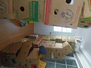 boites demenagement - moving box