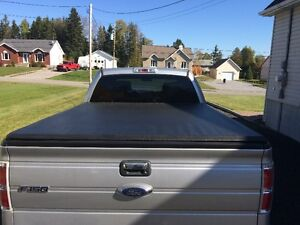 2014 Ford F-150 Fourgonnette, fourgon