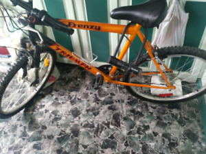 18 Speed Bycicle