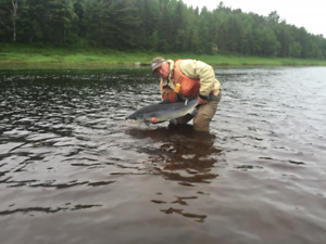 Miramichi Salmon Fishing Camp Share - Hogan's Pools - Blackville