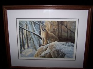 LIMITED EDITION OF A MOUNTAIN LION BY LISSA CALVERT,SIGNED.