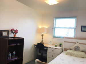 $410, upper, clean furnished brd available now, 5-min bus to UoG