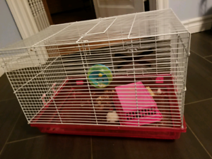 2 Cages hamster