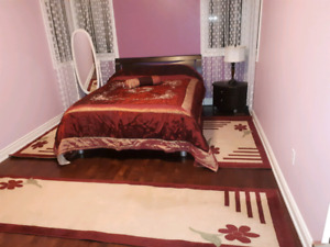 Rugs and bed cover