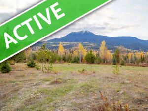 184 acres of Timber, Disked fields and Views!