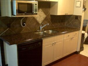 Fully Furnished Apartment Condo Near Downtown