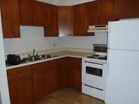 Large, One Bedroom Apt. Downtown, Highland Associates