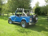 Jeep YJ - Unique