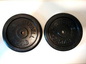 Iron weight plates / poids en fonte 2 x 50 lbs.