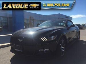 2016 Ford Mustang EcoBoost Premium   - $268.69 B/W - Low Mileage Windsor Region Ontario image 20