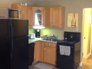 totally all inclusive furnished one bedroom