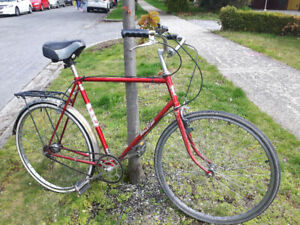 "Large Vintage 23"" Mens' Raleigh Cruiser Bike (tuned up/3-speed)"