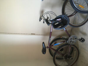 I have a road bike for sale and I want 45 bucks for it