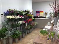Lloyds flowers in Clifton, Bristol are looking for an experienced florist