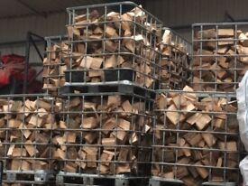 Hardwood ash logs
