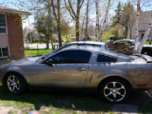 2005 Ford Mustang Coupe (2 door) 4.0 V6 Standard 5 Speed
