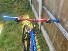 Radial Esker man's mountain bike