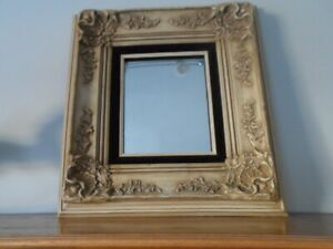 molded frame with mirror (18x 21 in)