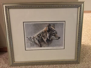 Robert Bateman, Coyote Head Study Limited Edition
