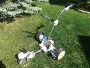 Remote Golf Cart   Kijiji - Buy, Sell & Save with Canada's