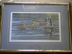"""Robert Bateman Signed A/P """"Canada Geese with Young""""- Print Kitchener / Waterloo Kitchener Area image 1"""