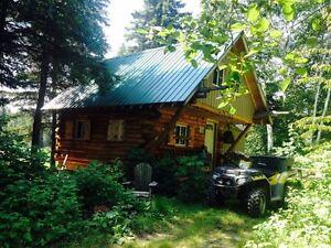 Log Cabin on 46.7 acres