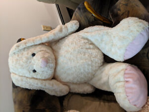 Free  Teddy from smoke free and Pet free home