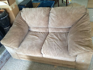 One pullout couch and one loveseat= both for 100