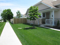Lawn care, Landscaping and More