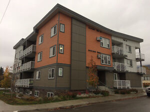 2 Bedroom 2 Bathroom Apartment - Available NOW